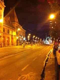 budapest market night
